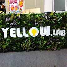 【飲食店~施工事例~】大阪府大阪市のタルト屋さん。 タルトの文字を全面に掲出したデザインで業態の訴求。