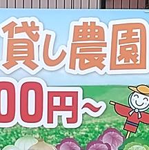 【貸し農園~看板設置事例~】 大阪府大阪市の貸し農園管理会社さん。   ペラ看板と同デザインを使用しコストダウンしましたが、解りやすい看板です。